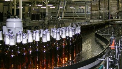 В Украине сократилось производство пива