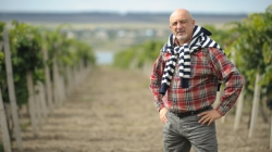 Глава Украинского бюро винограда и вина: Этот год может стать годом великих вин