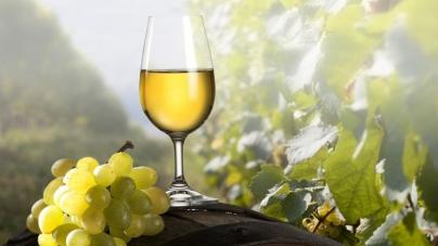 Характер потребления вин и сезонные предпочтения украинцев – исследование