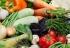 Обзор рынка овощей Украины. 2016 год