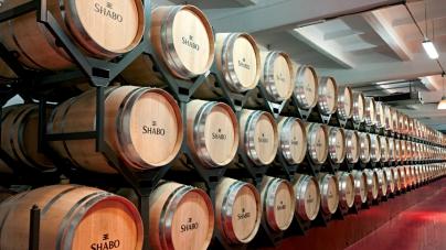 Вина Shabo во французском «Городе вина»