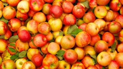 Кожна 12-та пляшка соку в США – з українських яблук, – Тарас Барщовський
