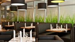 В Одессе запускают ресторан 4City, 70% прибыли которого пойдет на развитие города