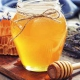 Проект организации предприятия по переработке меда
