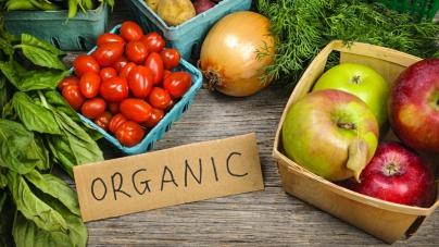 Из Украины экспортируется 80% органической продукции