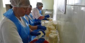 На Львівщині запрацювало нове виробництво якісних сирів