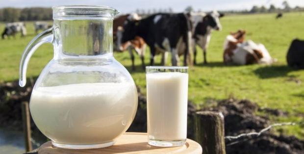 Сучасна молочна лабораторія дозволить 4,000 господарствам покращити якість молока, контролювати здоров'я корів та організувати селекційну роботу