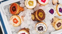 Halo Top: как низкокалорийное американское мороженое стало бизнесом за $100 млн