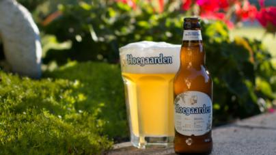 Новое фруктовое пиво Hoegaarden Cranberry – теперь в Украине