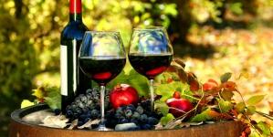 С начала года Украина закупила 1,4 миллиона бутылок грузинского вина