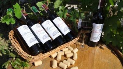 Государство будет поддерживать украинских виноделов