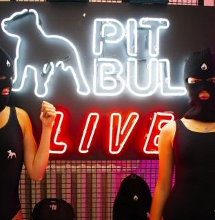 Pit Bull Bass або телепорт майбутнього: як BASSIDE святкував сьому річницю?
