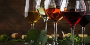 WineHub — первый в Украине форум, для тех, кто занимается, живет и интересуется виноделием
