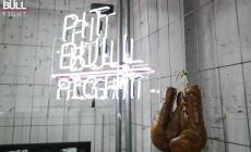Один, два, три… Pit Bull Fight ІІІ. Стартував новий сезон шаленого енергетичного бійцівського YouTube-турніру